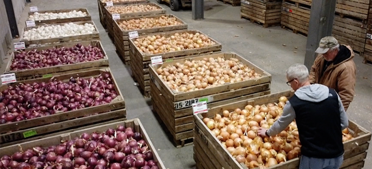 Crookham Onion Storage Review December 2020