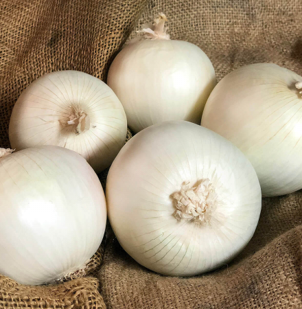 Crookham Onion White Ace