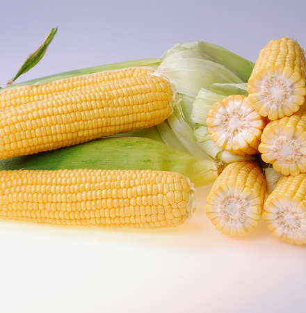 Salyna Crookham SweetCorn Processors