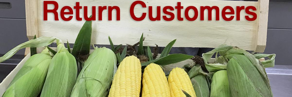 Crookham company, augmented hybrids corn